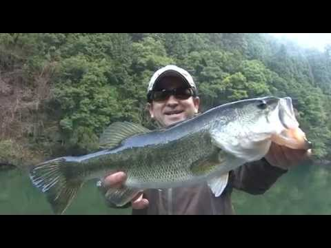 Japan Bass Fishing (THE STRONG POWER BAIT Vol.071 / FishArrow)