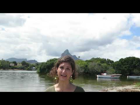 Mauritius.Internship - Sara from The Netherlands - Internship Mauritius - September 2020
