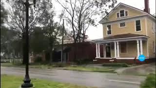 Furacão #Florence derruba árvores pela raiz em Carolina do Norte nos Estados Unidos #Hurricane