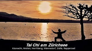 Gambar cover Tai Chi am Zürichsee  : : Taiji and Qigong courses in Stäfa