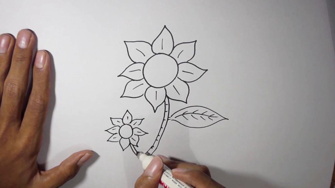 Cara Menggambar Bunga Untuk Pemula Youtube