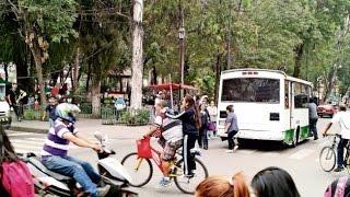 Ciclistas violan nuevo reglamento