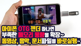 아이폰 OTG 젠더 [NX-OTG8P]
