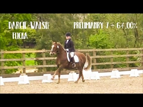 Preliminary 7 - Darcie Walsh & Flicka (MQ)