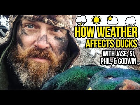 How To Scout Ducks With The Weather | Duck Hunting Tips & Tricks