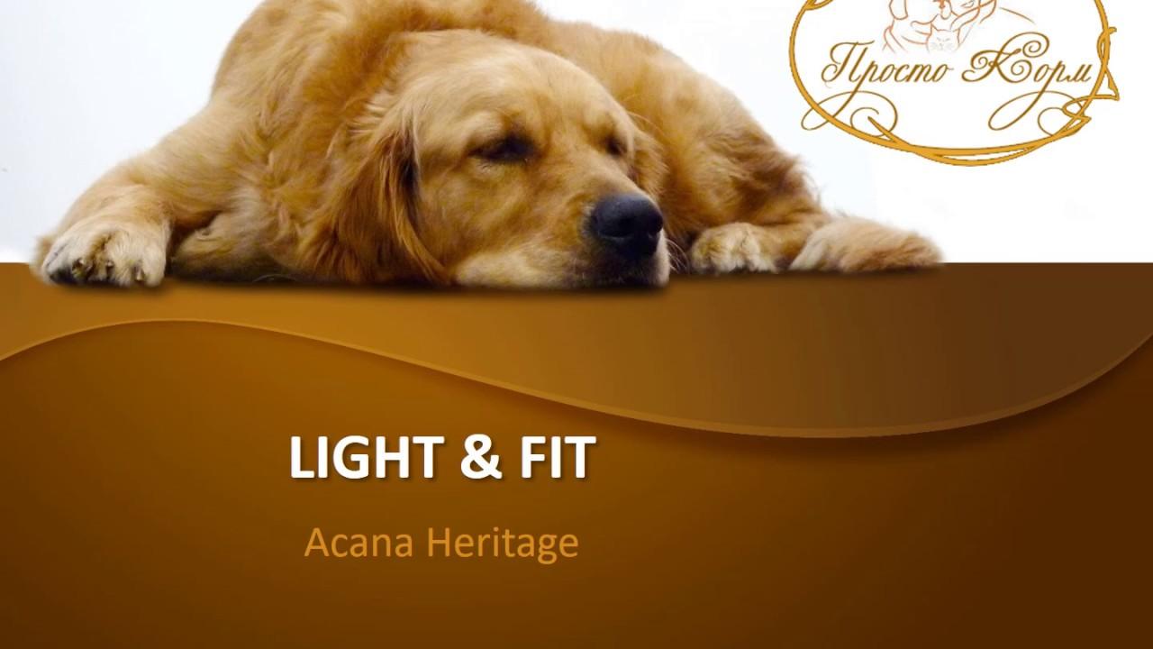 acana light fit youtube. Black Bedroom Furniture Sets. Home Design Ideas