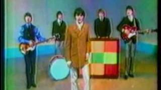 The Buckinghams - Kind Of A Drag (news clip)