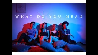 WHAT DO YOU MEAN - Justin Bieber (The Sam Willows Cover)