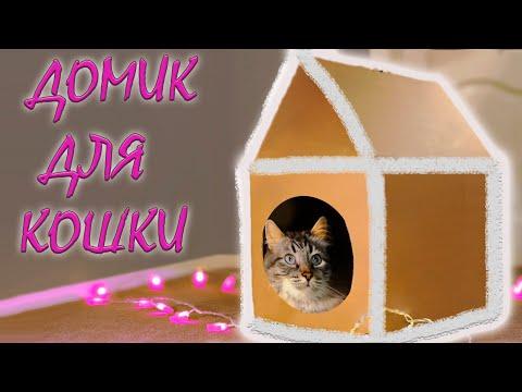 Домик для кота из картонной коробки своими руками