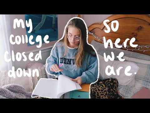 College Week In My Life Of Online Classes At Zoom University