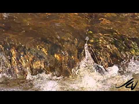 WATER -  Necessary for life, a resource to own, trade and profit from -  YouTube