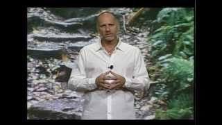 Yossi Ghinsberg: Jungle Survivor, Adventurer, Author, Master Storyteller & Environmental Advocate