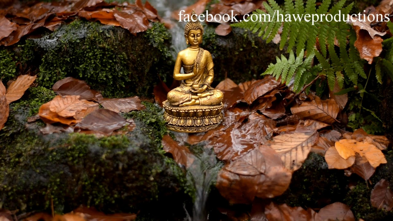 meditieren entspannen loslassen buddha an der quelle relaxingvideo youtube. Black Bedroom Furniture Sets. Home Design Ideas