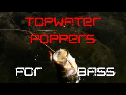 Bass Fishing: How to fish a Popper