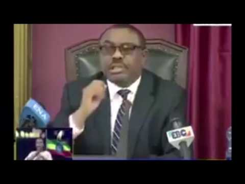Ethiopia's PM Hailemariam Desalegn speech on Parliament