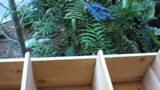 Building A Very Large Elevated Planter Box (part 3 Of 3)