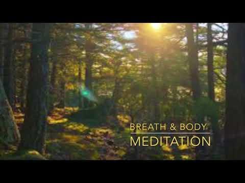 Breath & Body Meditation
