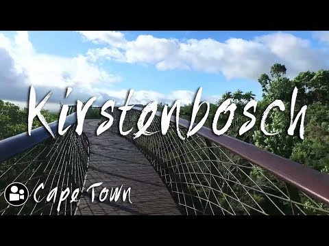 Guided Tour around Kirstenbosch Gardens Cape Town