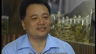 中国地理探奇95-走进毒蛇谷-HD高清完整版