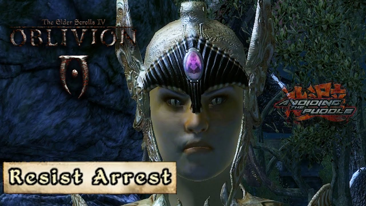 Suspect Stole a Potion, Watch Out He's Getting Belligerent | Aris The Elder Scrolls IV Oblivion