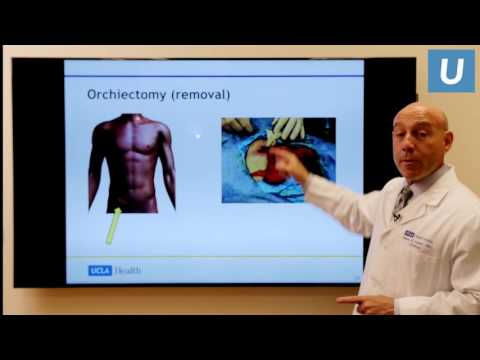 Testicular Cancer: What You Really Need To Know | UCLAMDCHAT Webinars
