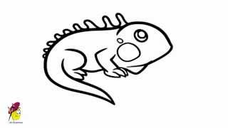 Iguana - Reptile Easy drawings - How to draw iguana