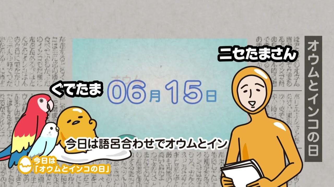 ぐでたまアニメ 第931話 公式配信(English subtitled)