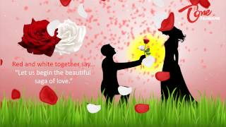 The Colour of Your Rose Says it all Valentine s Day Special