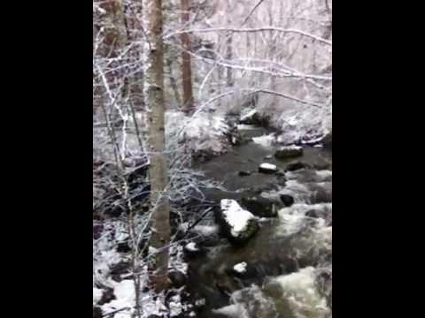 Bernard White winter strolls Ashland Creek