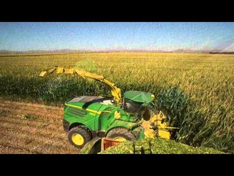 Self-Propelled Forage Harvester Precision Ag Technology