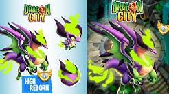 Dragon City:SO SOLL DAS SEIN! SIEHT ECHT GEIL AUS(🏁HEROIC RACE=HIGH REBORN DRAGON🏁)