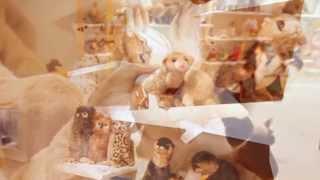 видео Мягкая игрушка жираф / Жирафик плюшевый большой купить в интернет-магазине Антошка
