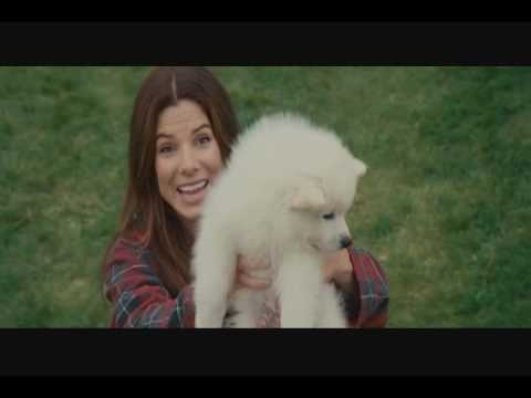 The Proposal - Scene with Kevin the Dog - YouTube