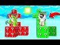SKYBLOCK VS ŞANS BLOKLARI - Minecraft