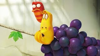 LARVA - GRAPE SWING | Cartoon Movie | Videos For Kids | Larva Cartoon | LARVA Official