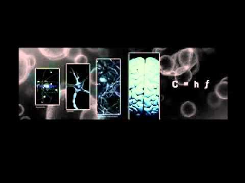 Tony Byker - 'Jah Love Flow' - FluidX DubMix