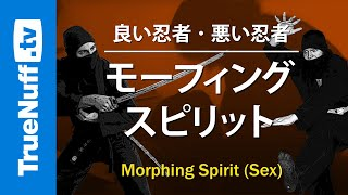 Good Ninja / Bad Ninja: Morphing Spirit (Sex)