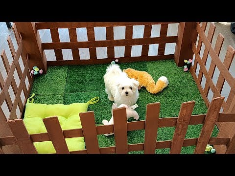 How To Make Cardboard Puppy Dog Playpen