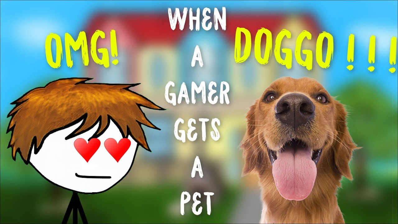 When a gamer gets a pet
