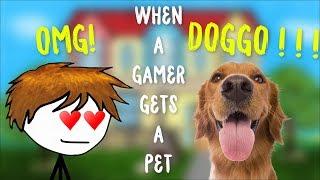 When a gamer gets a pet
