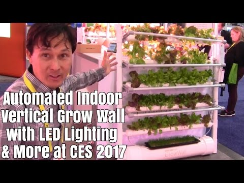 Automated Indoor Vertical Grow Wall with LED Lighting + More