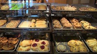 Discover Panera Bread!