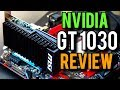 NVIDIA GT 1030 GPU Review | PUBG, CS GO, And More!