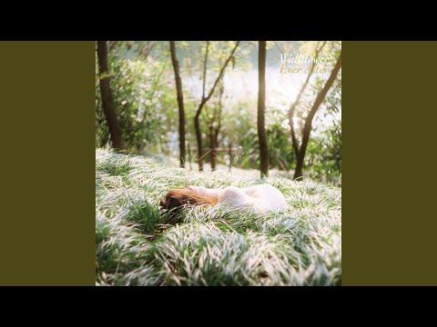 Wallflower - Thru The Night baixar grátis um toque para celular