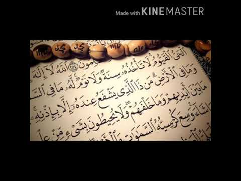 تحميل سورة البقرة ناصر القطامي mp3