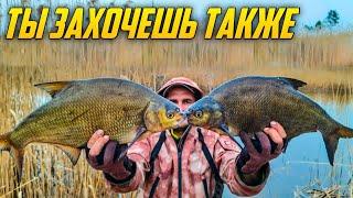 Стынет КРОВЬ от ПОКЛЕВОК Ловля леща Лещ весной Рыбалка на леща 2021 Лещ