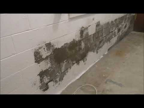 TRYING TO REMOVE THE MOISTURE OUT OF THE CINDER BLOCK WALL