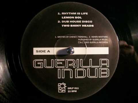Two Shiny Heads Dub House Disco (GiD mix)