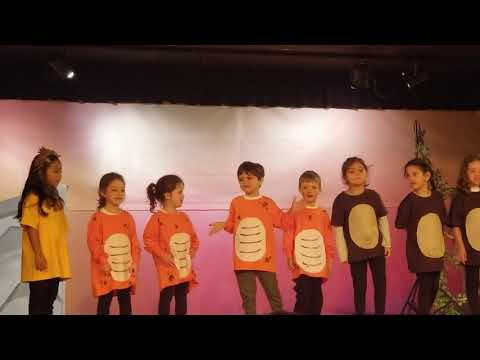 Domenico's Simba Performance