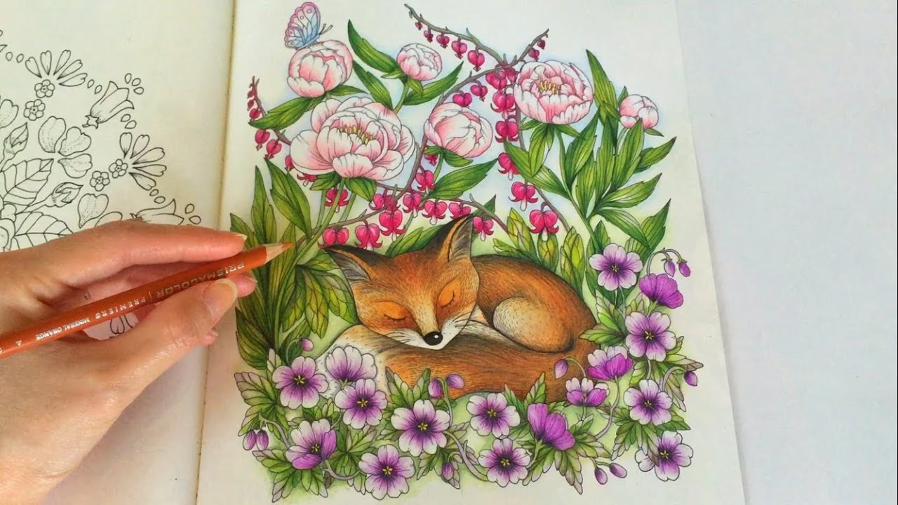 The Sleeping Fox | BLOMSTERMANDALA Coloring Book | Coloring With ...
